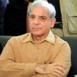 shahbaz sharif earning